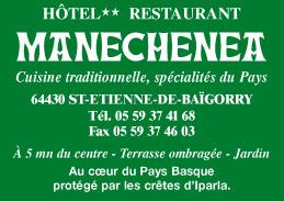 Manechenea